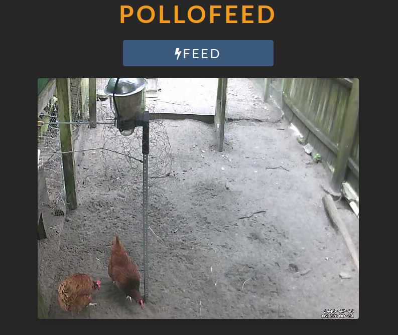 pollofeed.png